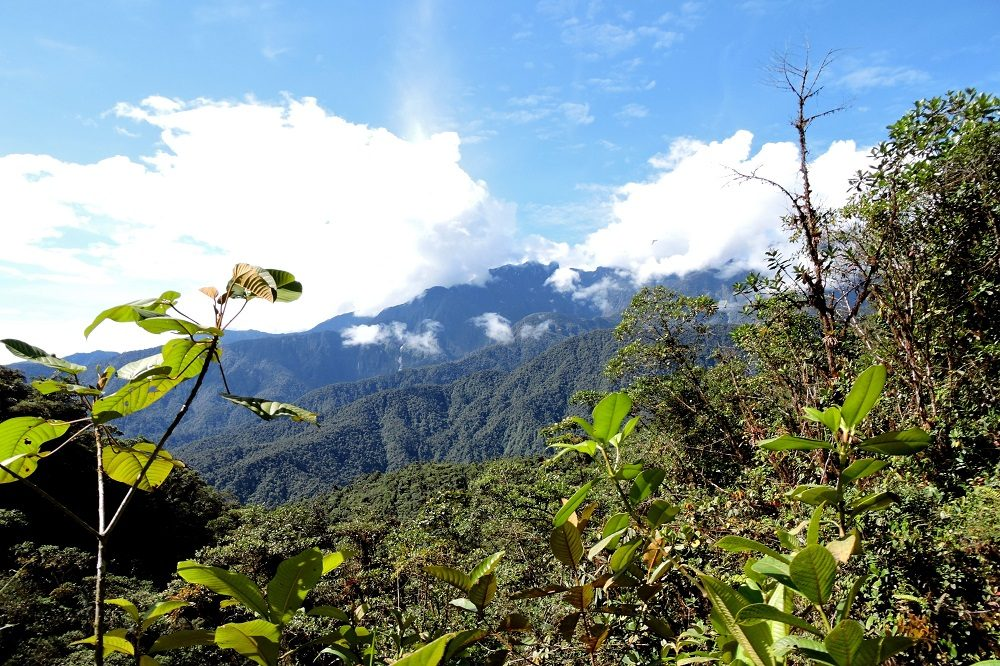 Montezuma lodge uitzicht