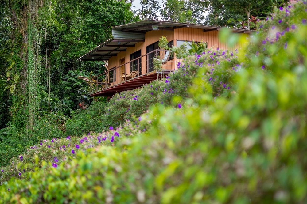 Nepenthe accommodatie Arenal