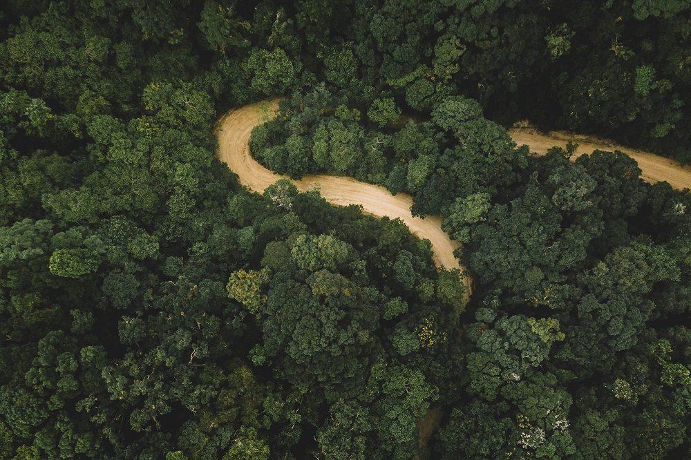 Rio Platano rondreis honduras