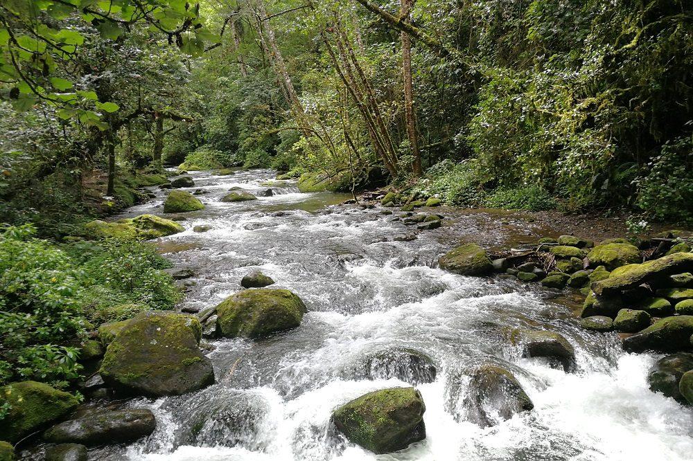 San Gerardo de Dota rivier