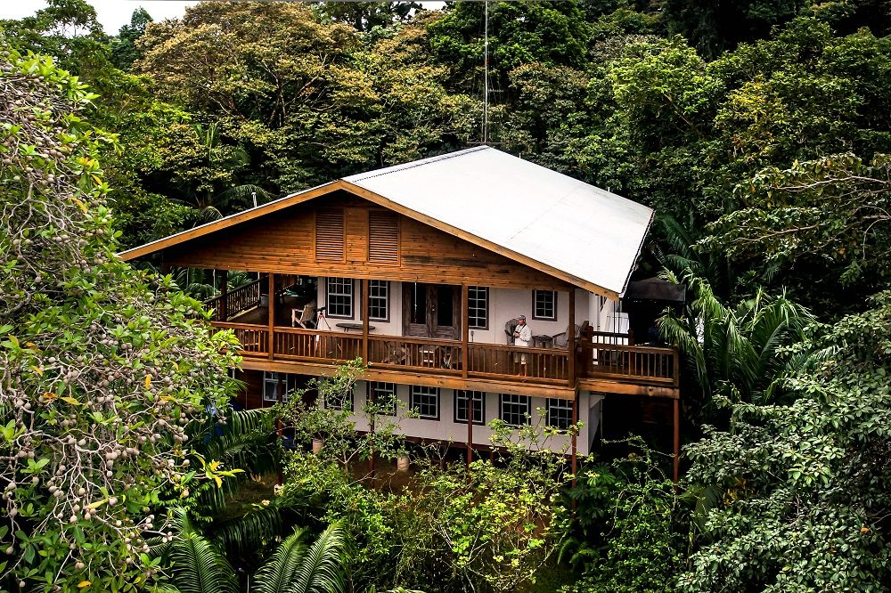 vogelreis panama Tranquilo Bay Lodge (fotocredits Tranquilo Bay Eco Adventure Lodge)