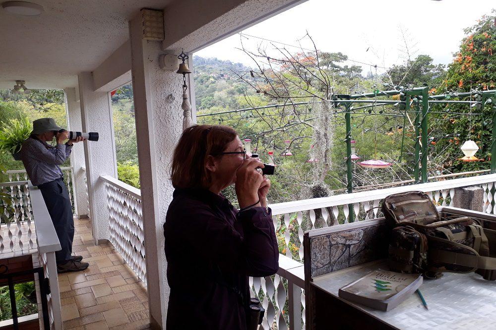 Vogelreis Colombia vogeltuin