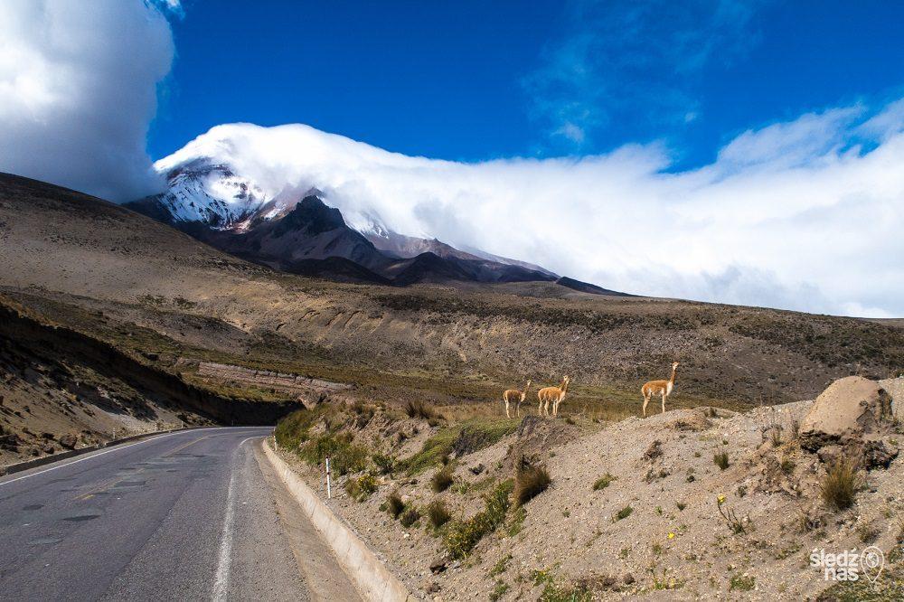 Weg bij Chimborazo