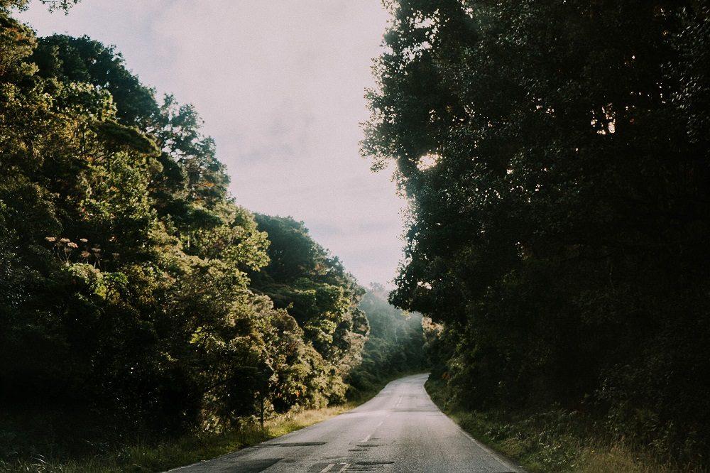 autorijden in Costa Rica in het nevelwoud