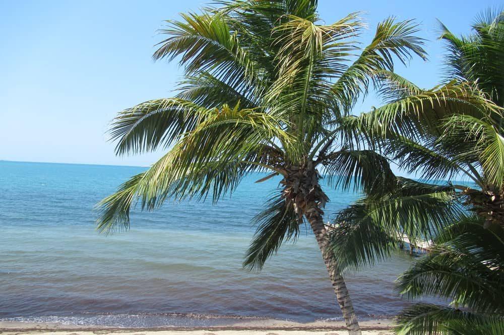 bezienswaardigheden belize hopkins strand