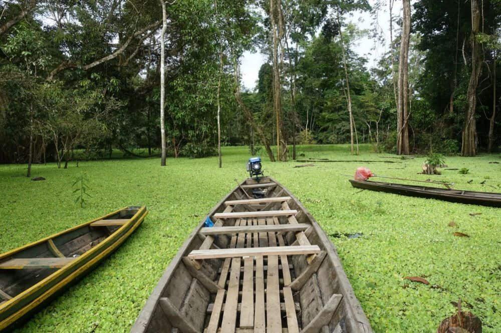 colombia reizen amazone gebied