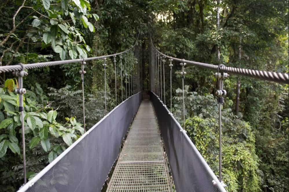 costa rica reizen arenal hanging bridges