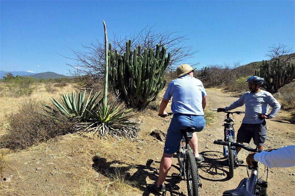 fietstocht oaxaca teotitlan