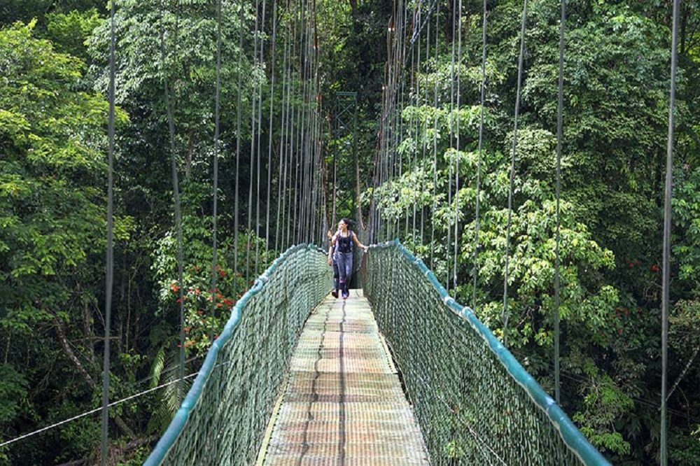 hanging bridge sarapiqui
