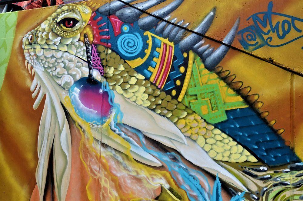 iguana comuna 13