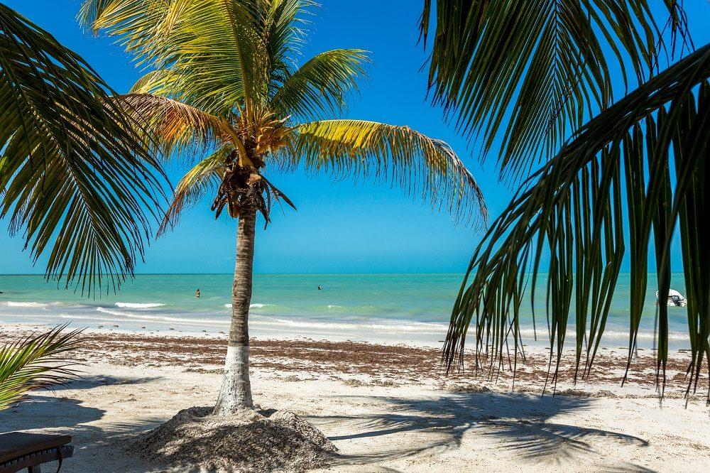 isla holbox rondreis mexico