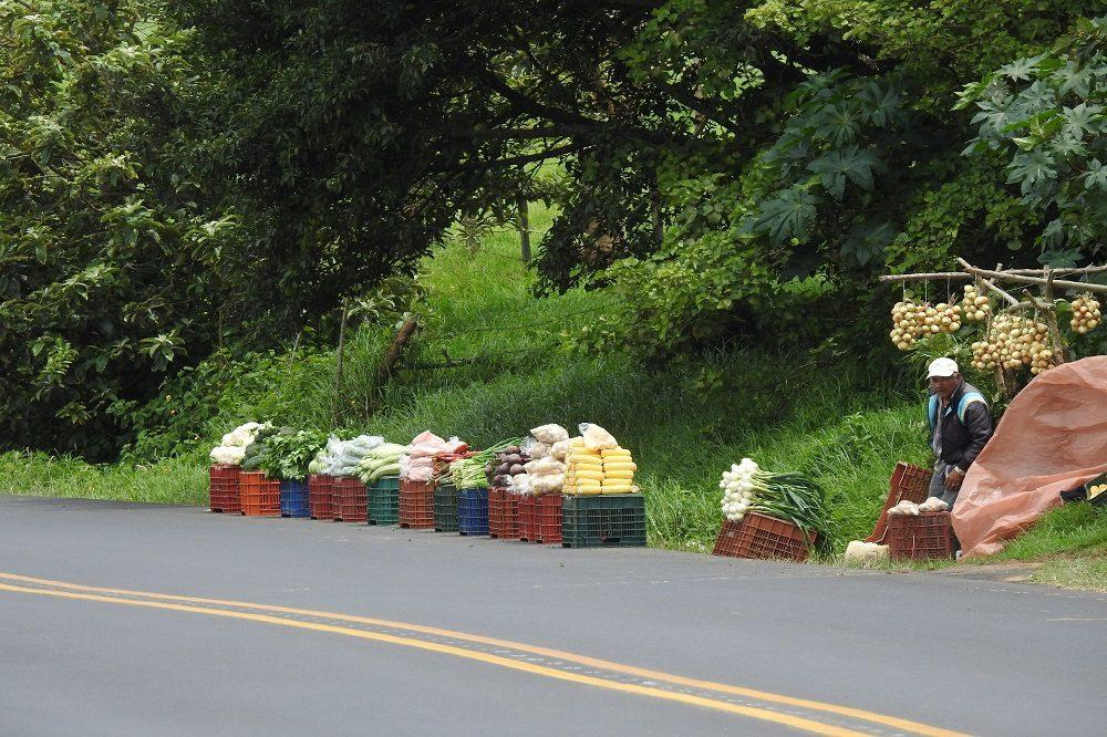 lokale bevolking langs de weg in Costa Rica