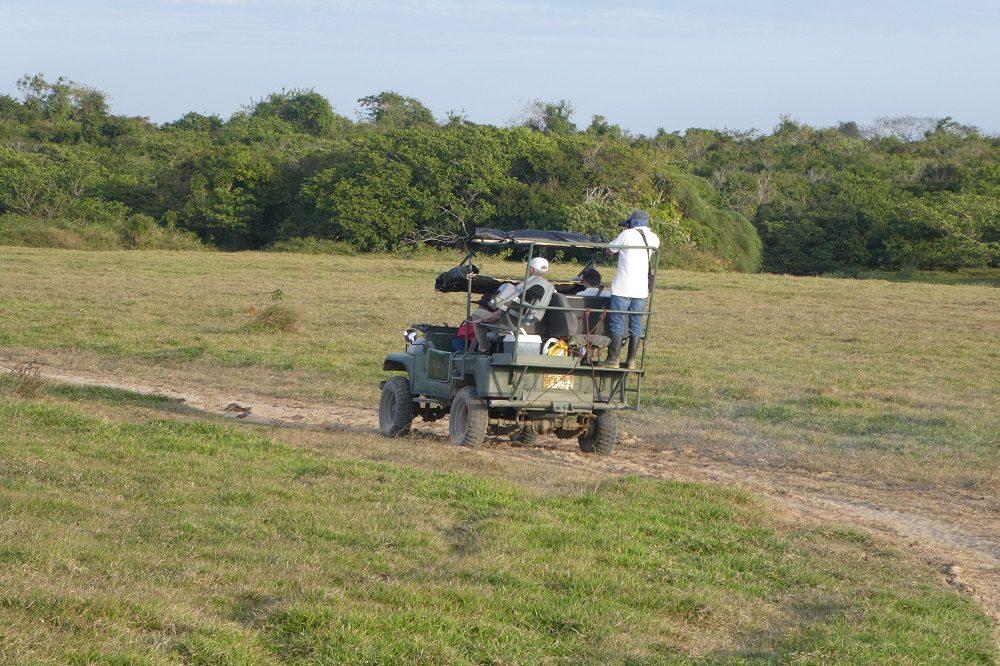 los llanos rondreis colombia safari
