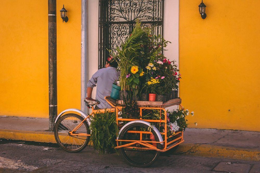 merida hoogtepunten mexico reis