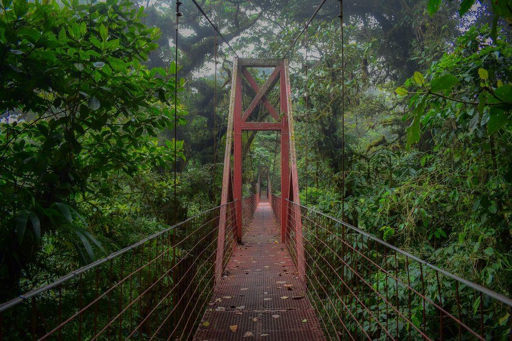 monteverde brug