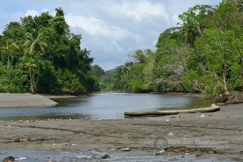 nationaal park corcovado costa rica fotoreis