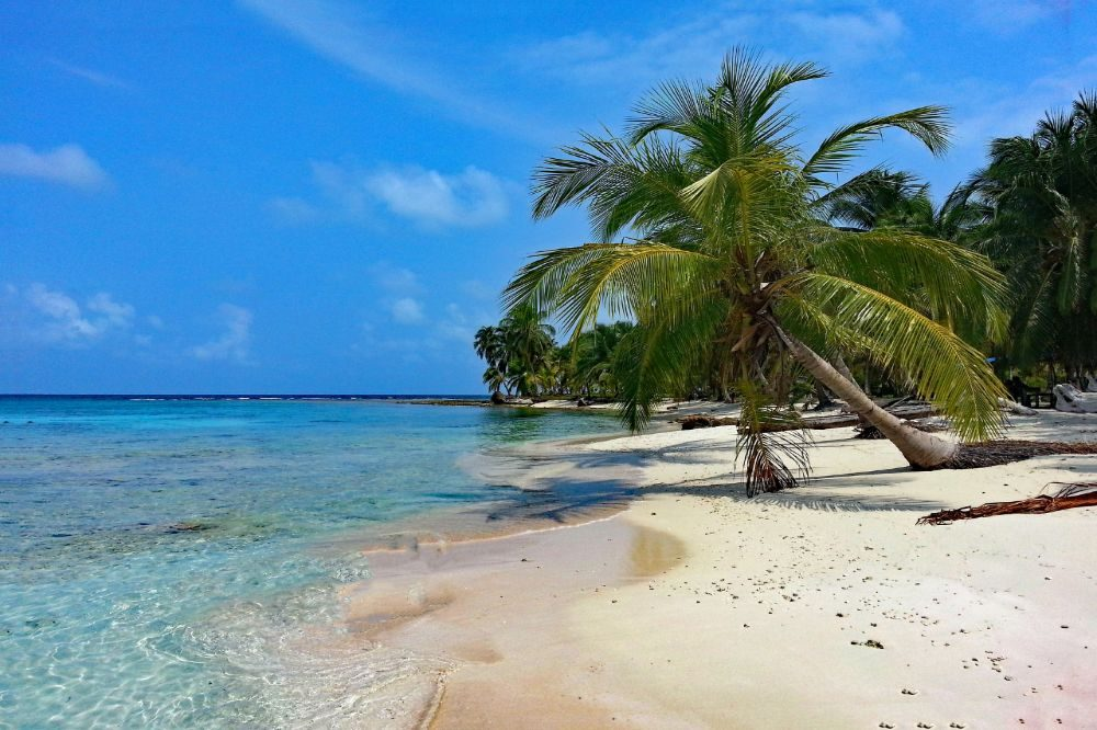 panama reizen eiland palmbomen