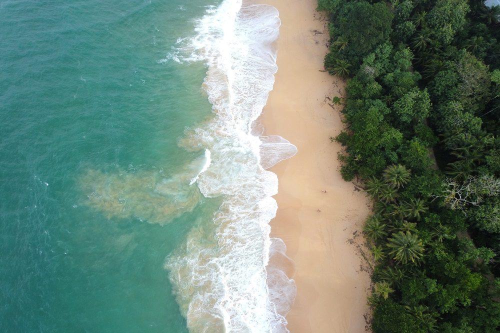 playa bluff bocas