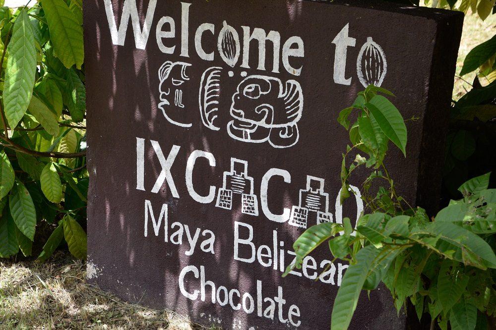 rondreis belize cacao tour
