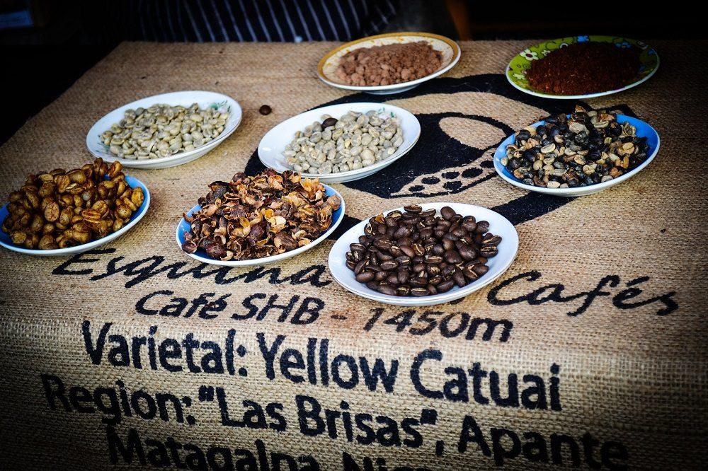 rondreis nicaragua koffie