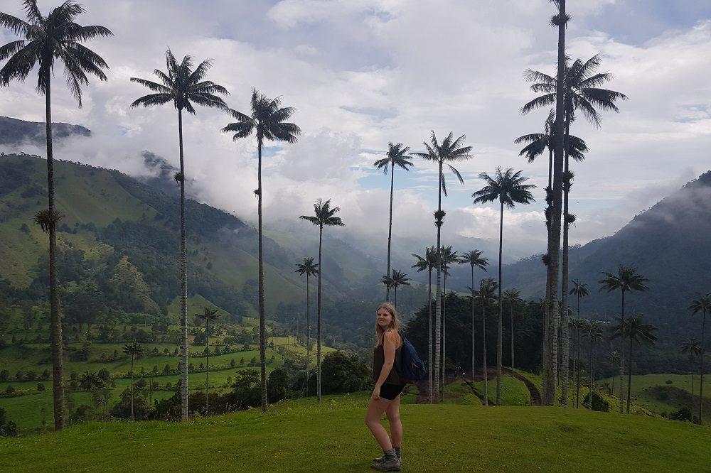 valle de cocora colombia hoogtepunten