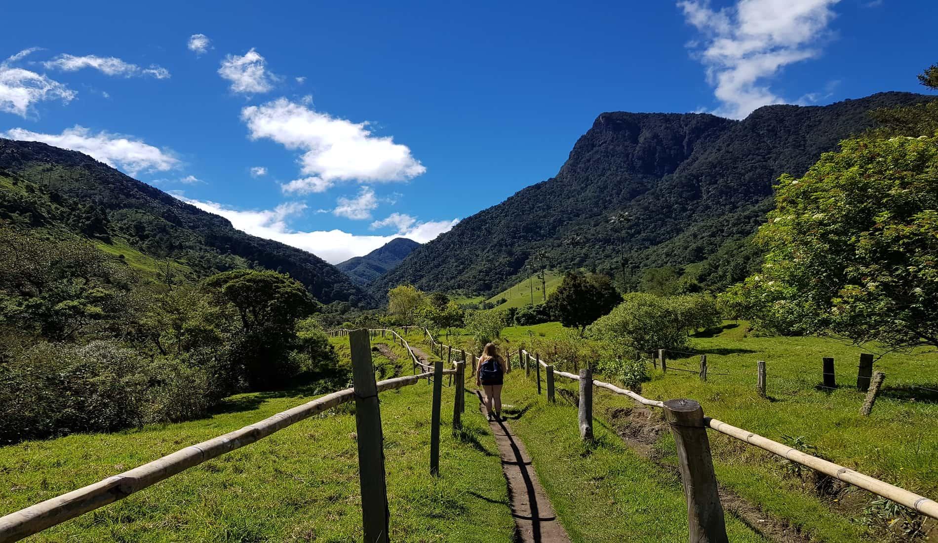 colombia reizen valle cocora