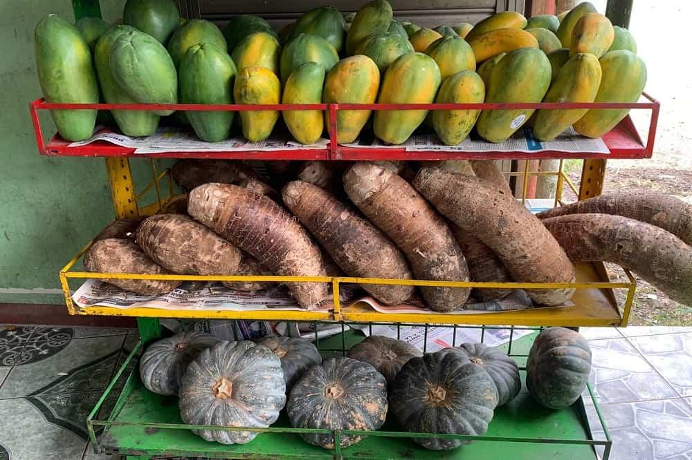 fruit costa rica eten en drinken reizen
