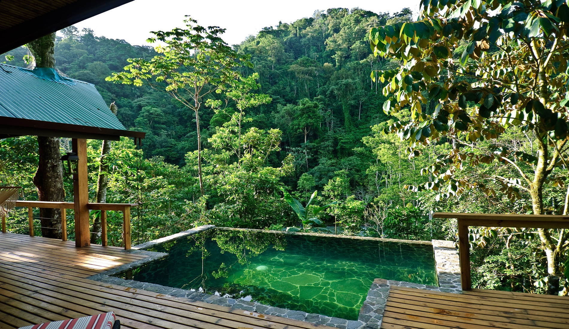 lodge pacuare rivier plunge pool regenwoud