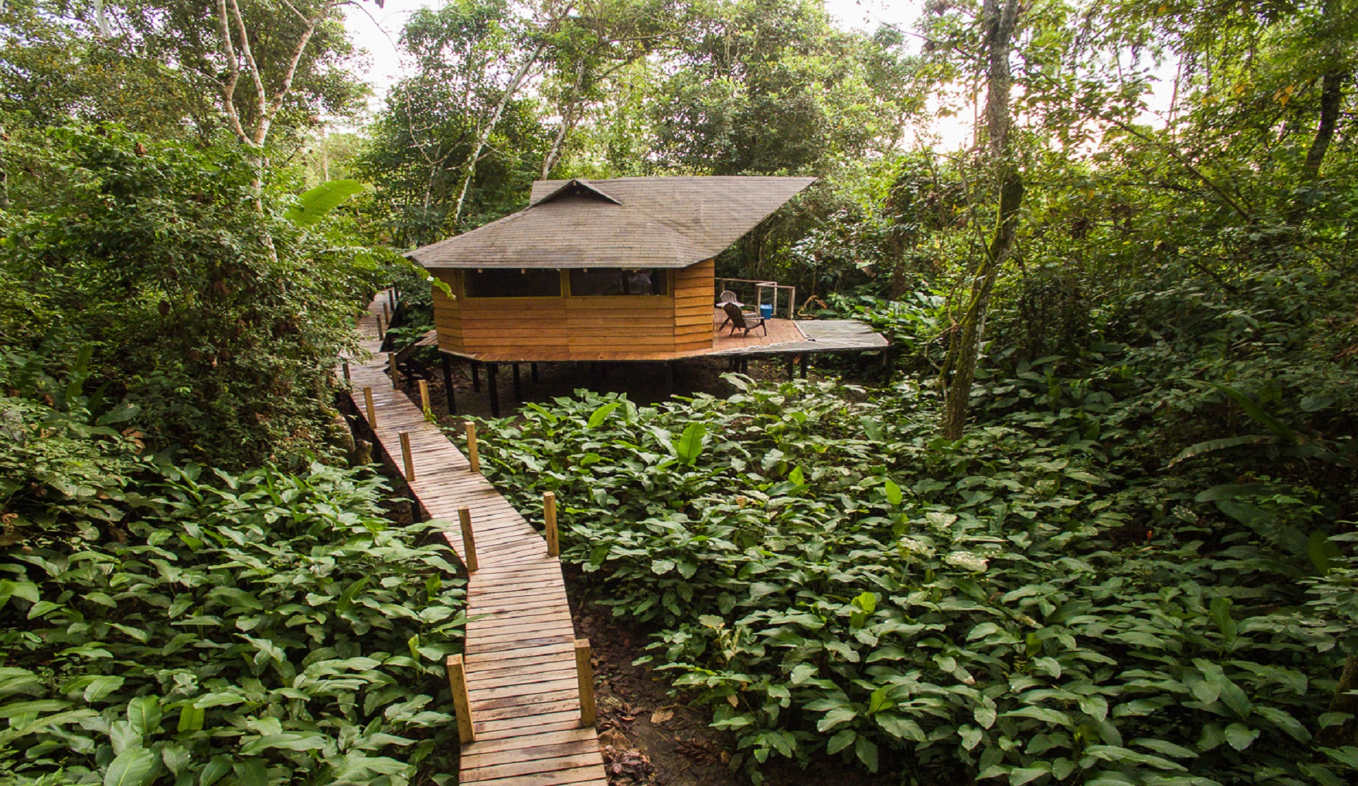 manigua lodge colombia