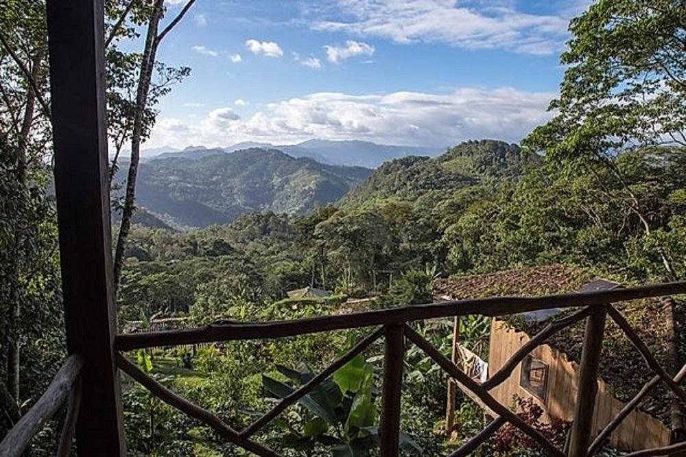 nevelwoud matagalpa rondreis nicaragua