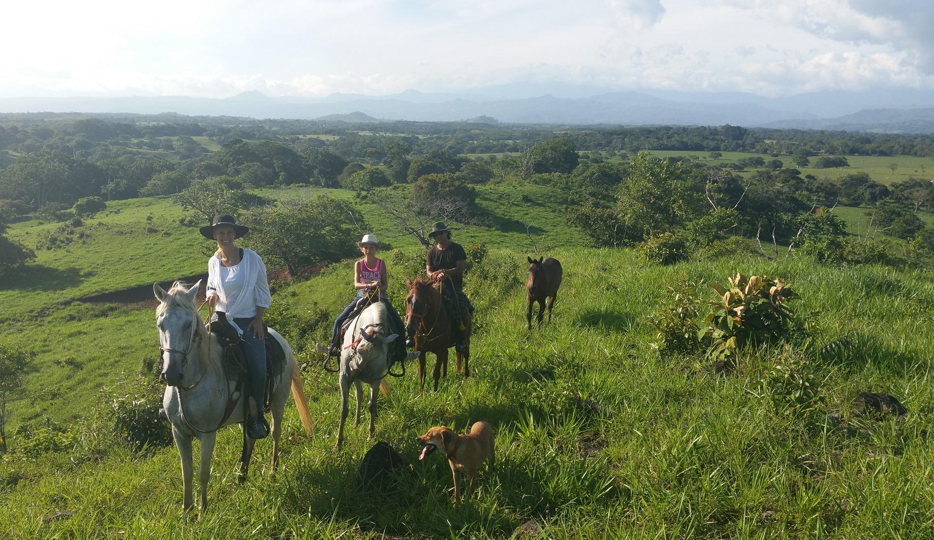 paardrijden bar aisha