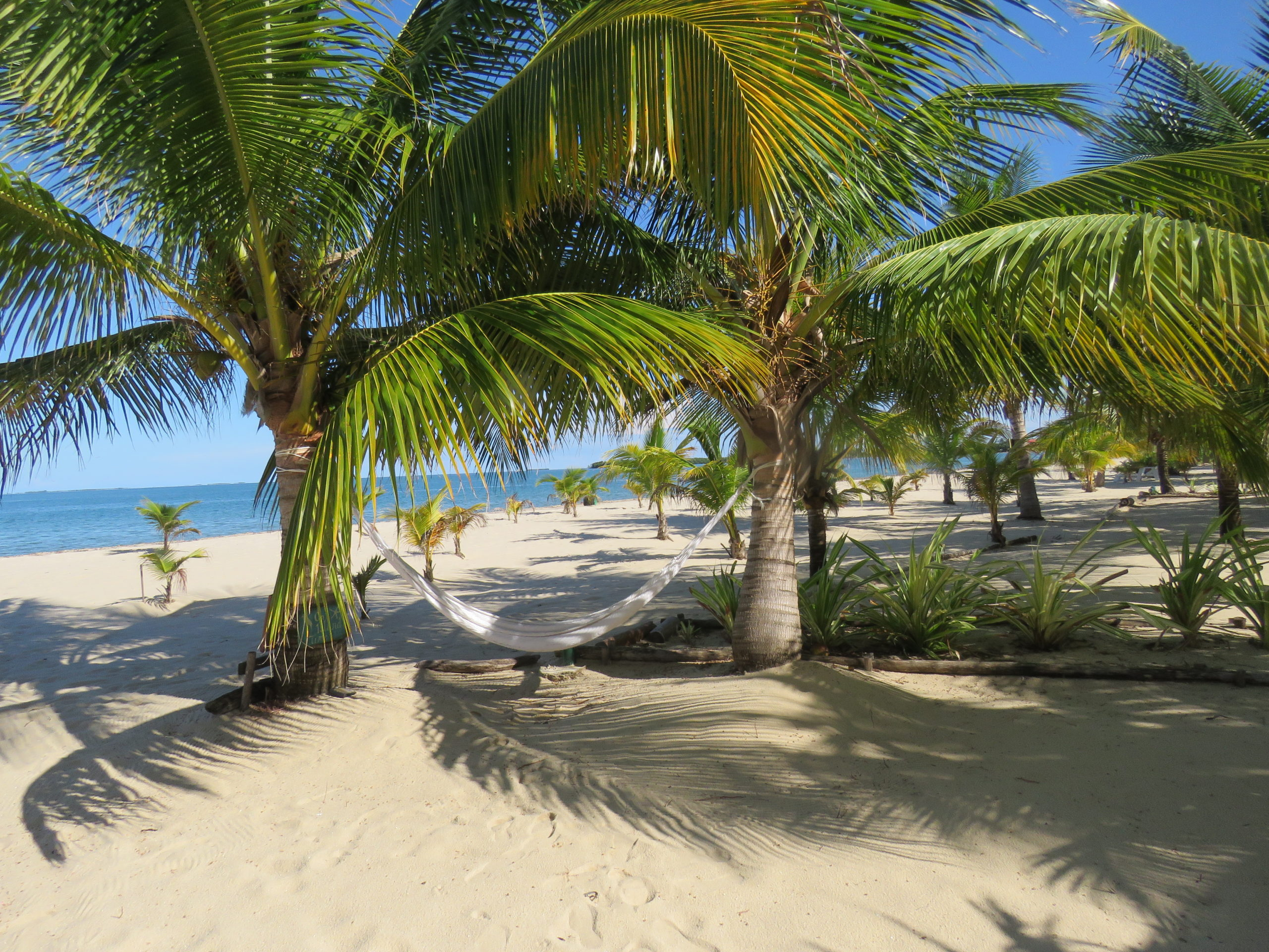 placencia belize