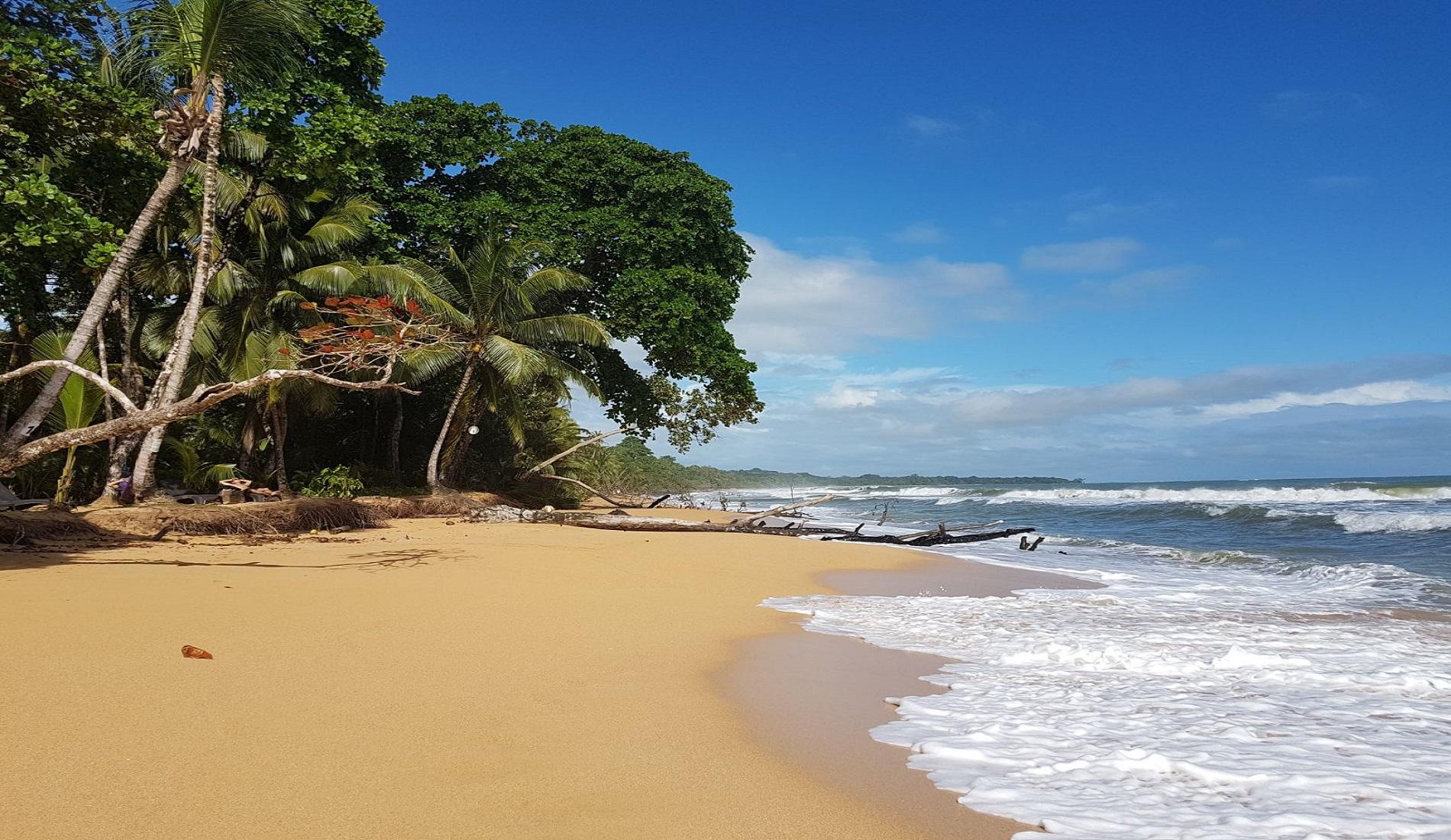 playa bluff panama