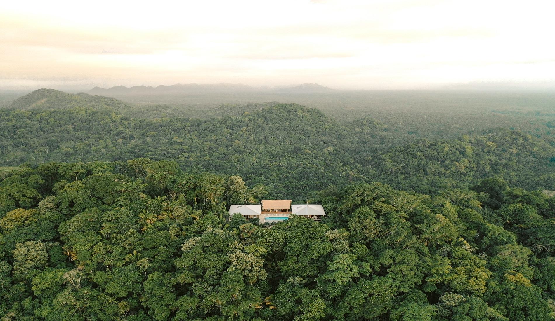 regenwoud belize reizen