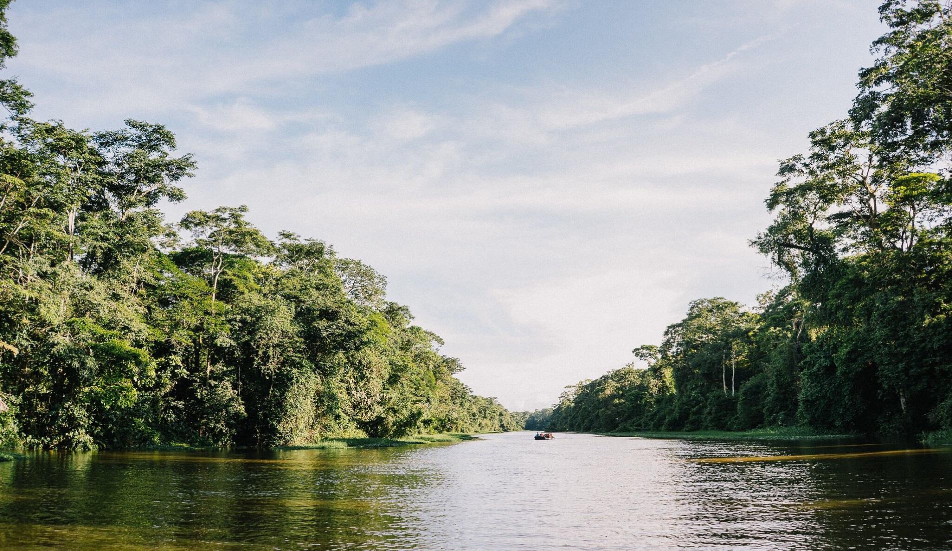 regenwoud nicaragua of costa rica
