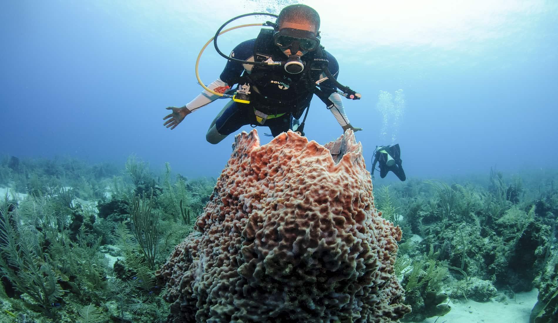 reisverslag belize duiken