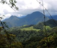 Natuur Reservaat Rio Blanco