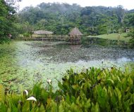 Boca Tapada