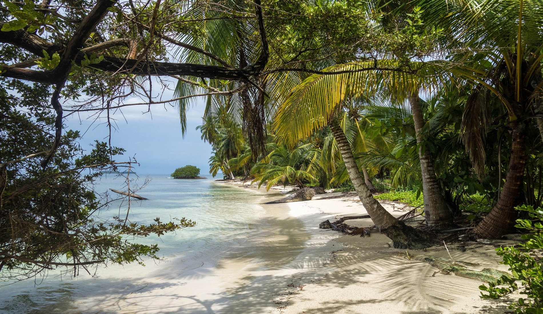 san blas eiland palmbomen
