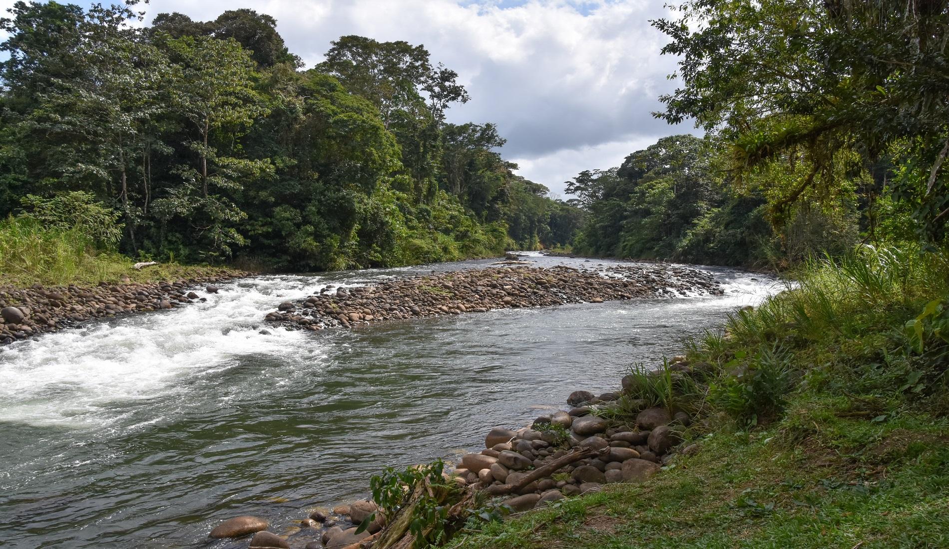 Rio Sarapiqui