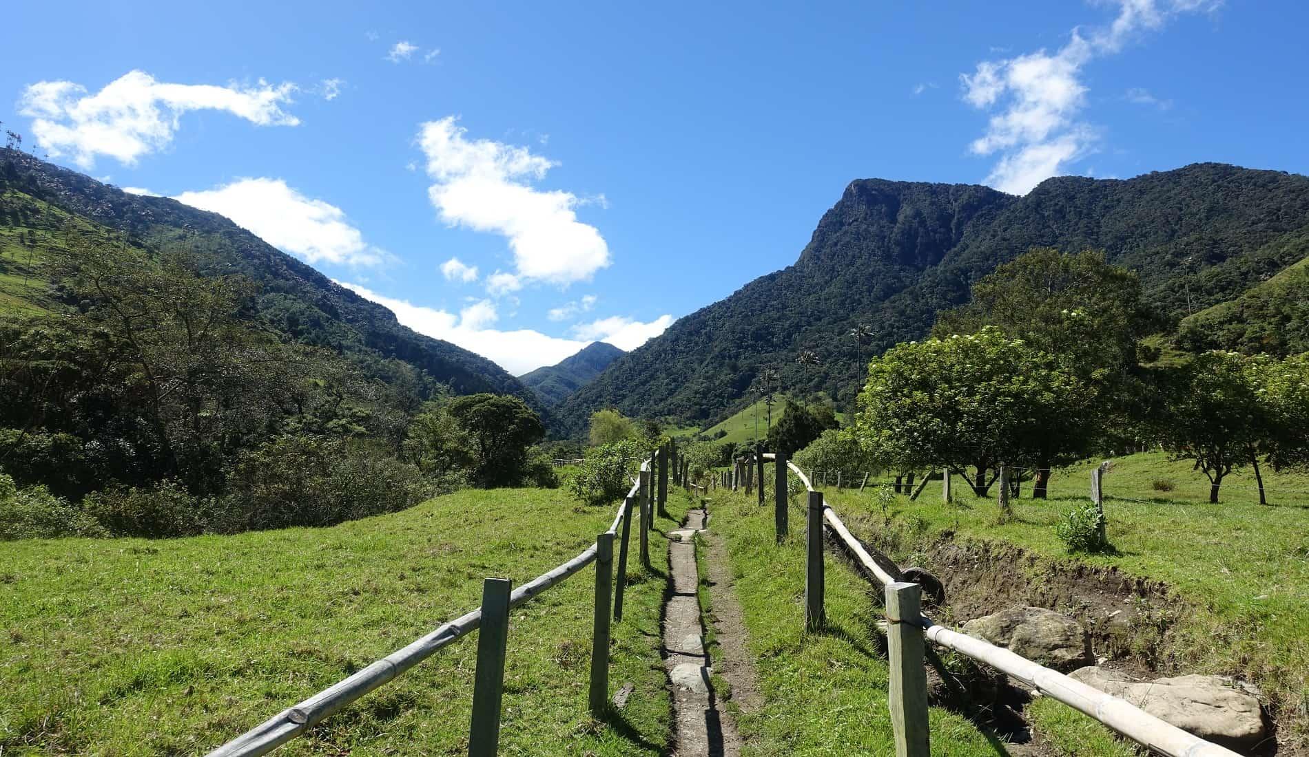 valle de cocora colombia rondreis